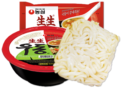 Japanese style boiled noodles